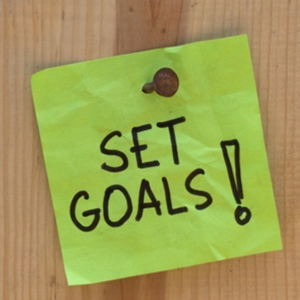 goals_intro